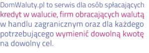 DomWaluty-oNas